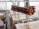 Какие продукты Россия экспортирует в Китай? Торговля между Китаем и Россией