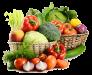 Семена в Украине оптом и в розницу с доставкой почтой