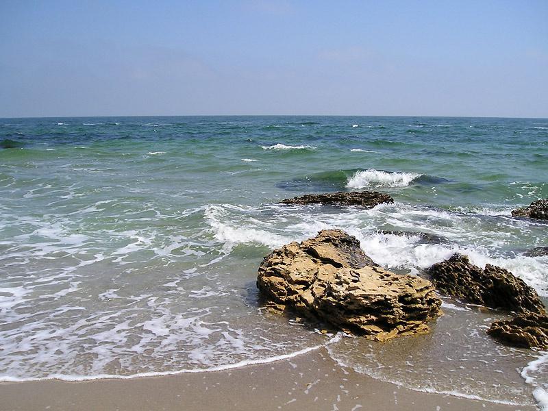 Прочее отдых на черном море в одессе