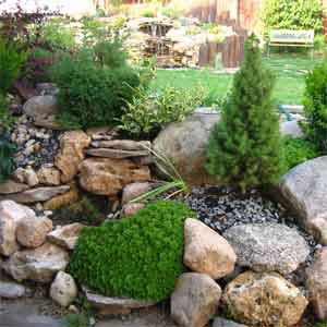 Озеленення, благоустрій території