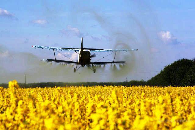 опрыскивание рапса самолетом ан-2