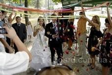 Тамада,живая музыка,dj,баянист на свадьбу Киев!