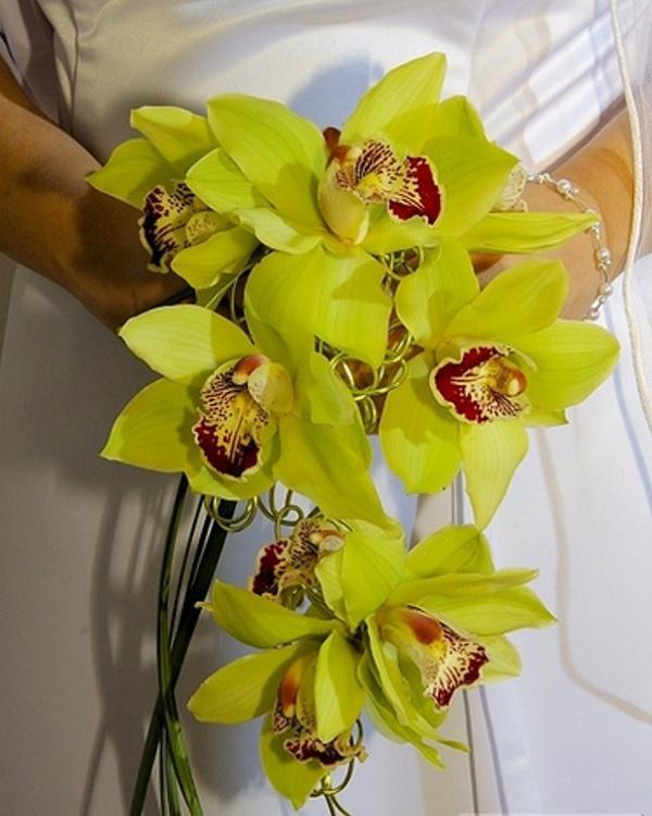 Каскадный букет невесты из желто-зеленых орхидей для свадебного
