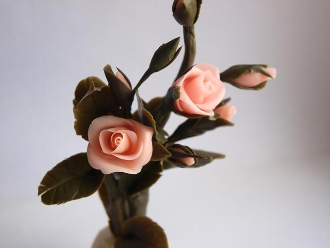 Комнатный цветок женское счастье
