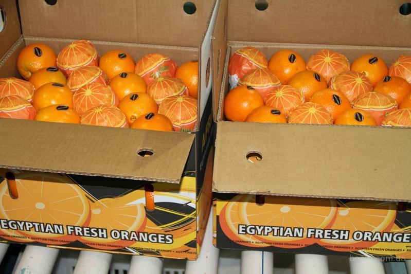 Апельсины из египта