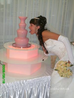 Заказать шоколадный фонтан Киев.
