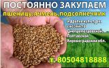 Борошно _ Мука _ Днепропетровск