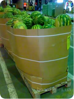 Смотрите также: продажа дыни арбуза. продажа дыни опт арбуза ( 2011-06...