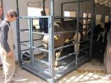 Весы для животноводства, продажа, ремонт.