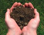 Скоро весна, позаботьтесь о ваших цветах уже сегодня, приобретите грунтовые смеси