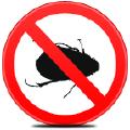 дезинсекция уничтожение насекомых тараканов блох клопов Ялта, Алушта,