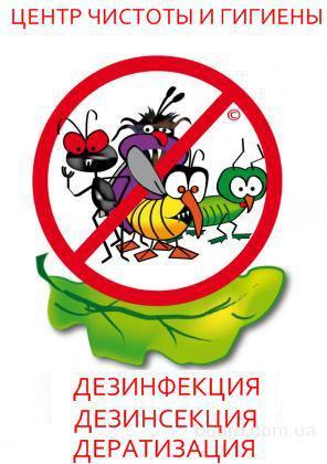 Уничтожение тараканов. Днепропетровск