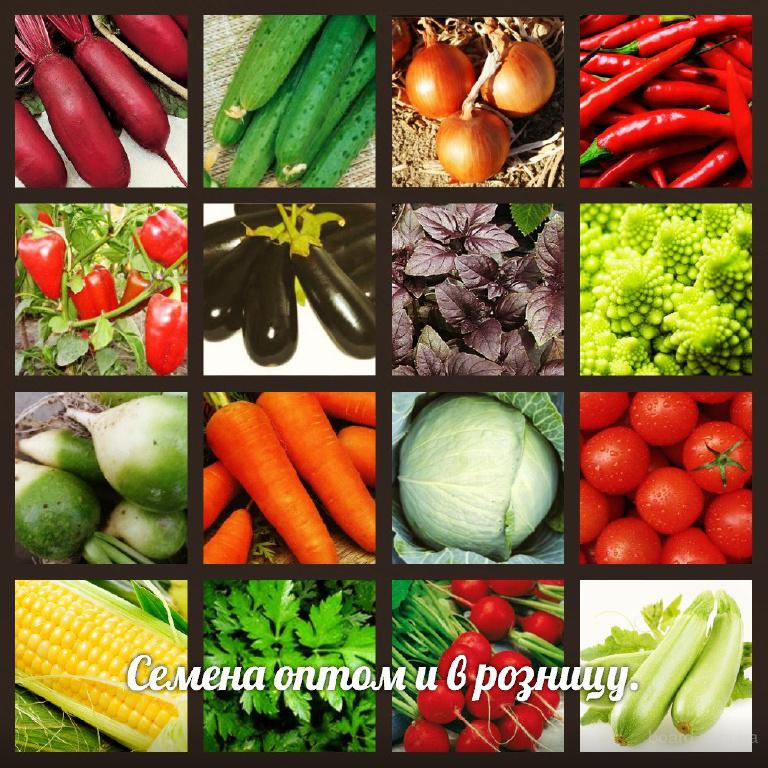 Самые популярные  семена овощных культур