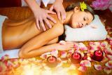 Профессиональный массаж в Житомире
