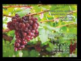 Виготовлення календарів