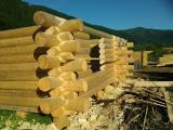 Строительство деревянных домов со срубов